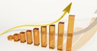 Piani Individuali di Risparmio a Lungo Termine (PIR): Cosa Sono