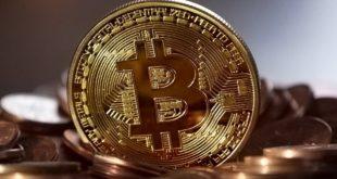 bitcoin anche billy nipote berlusconi nel mondo delle criptovalute