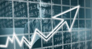 i pip nel forex cosa sono e quanto valgono nel mercato del forex